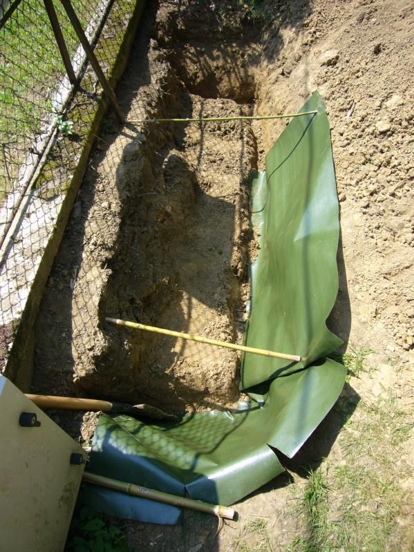 Subaudio Les Bambous Comment Planter Une Haie De Bambous